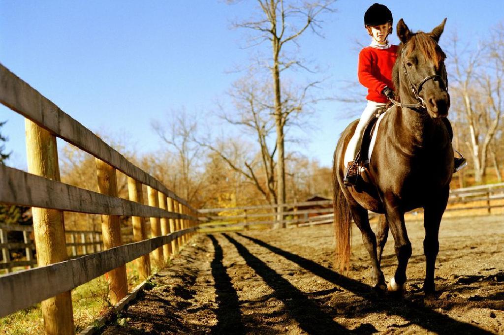 Mười câu hỏi thường gặp về Cưỡi ngựa