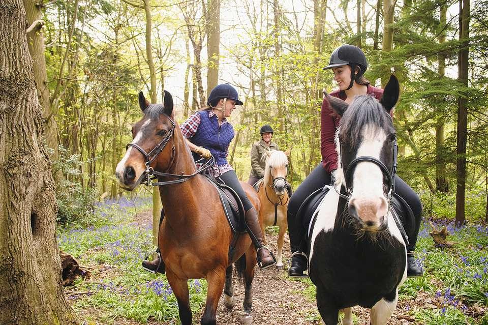 Ba cô gái trên đường mòn cưỡi ngựa đi về phía máy ảnh.